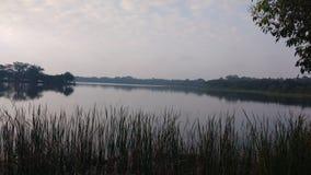 Mattina in un lago fotografia stock