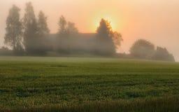 Mattina una bella alba di estate nel campo Immagini Stock