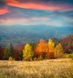 Mattina variopinta di autunno in montagne carpatiche Fotografia Stock Libera da Diritti