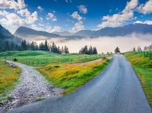 Mattina variopinta di estate nel parco nazionale di Triglav Fotografie Stock