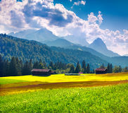 Mattina variopinta di estate nelle alpi tedesche Immagini Stock
