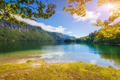 Mattina variopinta di estate sul lago Bohinj in Triglav p nazionale Fotografia Stock