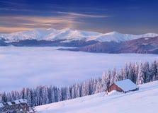 Mattina variopinta di inverno nelle montagne carpatiche fotografia stock