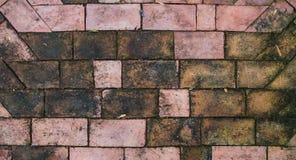 Mattone della pavimentazione Immagini Stock