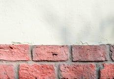 Mattone di corallo misto e fondo bianco della parete di pietra immagine stock libera da diritti