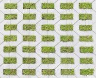 Mattonelle con erba fotografie stock libere da diritti