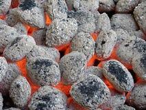 Mattonelle del carbone di legna Fotografia Stock Libera da Diritti