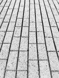 Mattonelle del marciapiede, disegno in bianco e nero, elaborazione della foto fotografia stock
