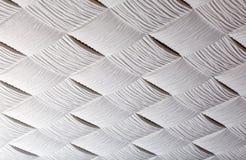 Mattonelle del soffitto nel soffitto Immagini Stock Libere da Diritti