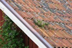 Mattonelle dell'argilla su manutenzione neding superiore del tetto immagini stock