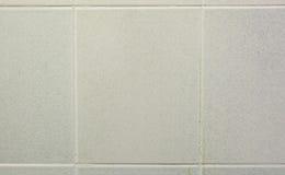 Mattonelle della parete Fotografia Stock