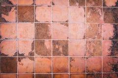 Mattonelle della parete di Brown e dettagli ceramici di superficie Immagini Stock Libere da Diritti