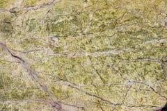 Mattonelle di marmo dell'interno di progettazione 3d della pavimentazione Fotografie Stock Libere da Diritti
