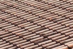 Mattonelle di tetto con i licheni Immagine Stock