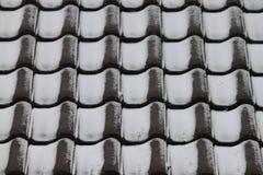 Mattonelle di tetto con la polvere della neve Immagini Stock