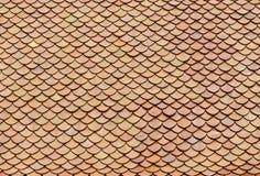 Mattonelle di tetto dei mattoni rossi Fotografia Stock