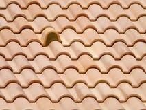 Mattonelle di tetto dell'argilla Fotografia Stock Libera da Diritti