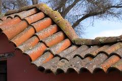 Mattonelle di tetto di terracotta fotografie stock libere da diritti