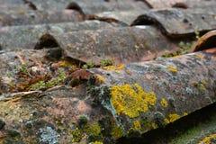 Mattonelle di tetto di terracotta in sole basso Immagine Stock Libera da Diritti