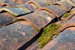 Mattonelle di tetto di terracotta in sole basso Fotografia Stock Libera da Diritti