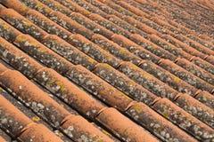 Mattonelle di tetto portoghesi Fotografia Stock