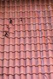 Mattonelle di tetto rotte Fotografie Stock Libere da Diritti