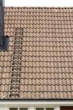 Mattonelle di tetto svedesi Fotografia Stock