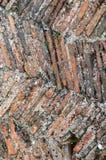 Mattonelle medievali del camino Fotografia Stock Libera da Diritti