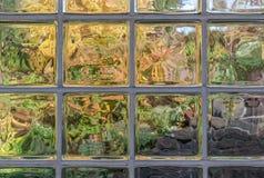 Mattoni di vetro in natura Immagine Stock