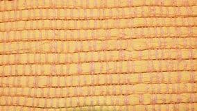 Mattor silkespapper - detalj Royaltyfri Fotografi