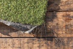 Mattt stycke av konstgjort gräs Arkivbild
