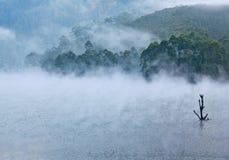 Mattupetty Lake in Kerala, South India Stock Photos