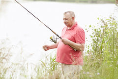 Mature angler catching fish on lake Stock Image