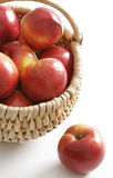 Mature apples Royalty Free Stock Photo
