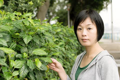 Mature Asian woman Stock Image