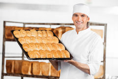 Mature Baker Showing Breads In Baking Tray Royalty Free Stock Photo