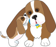 Basset Talk Dad Royalty Free Stock Photography