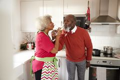 Mature black couple celebrating on Christmas day drinking a toast with arms entwined, selective focus royalty free stock photo