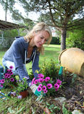 Mature blond woman gardening at home. Cheerful blond woman planting flowers in garden Stock Photography