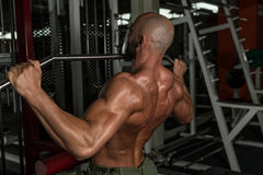 Mature Bodybuilder Doing Heavy Weight Exercise For Back Stock Photography