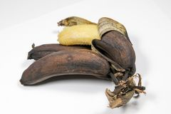 Mature brown banana. A long curved fruit that grows in clusters and has soft pulpy flesh and yellow skin when ripe Stock Image