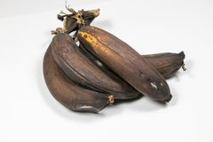 Mature brown banana. A long curved fruit that grows in clusters and has soft pulpy flesh and yellow skin when ripe Royalty Free Stock Images