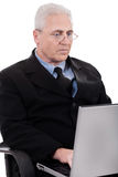 Mature business man busy working in notebook. On white background Stock Image