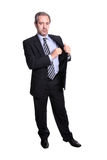 Mature business man portrait Royalty Free Stock Images