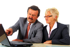 Mature Business Team Stock Images
