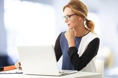 Mature business woman portrait Stock Photography