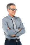 Mature Businessman With Glasses Stock Photography