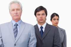 Mature businessman with his employees Royalty Free Stock Photo