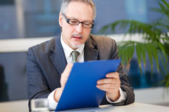 Mature businessman in his office Stock Photo