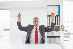 Mature businessman holding pen and book Royalty Free Stock Image